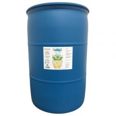 SLF-100 55 Gallon (Freight Only)